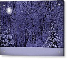 Acrylic Print featuring the photograph Blue Snow by David Dehner