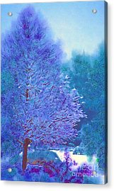 Blue Snow Scene Acrylic Print by Donna Bentley