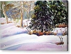 Blue Spruce Acrylic Print by Chito Gonzaga