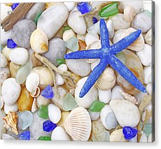 Blue Starfish Acrylic Print by Kelly S Andrews