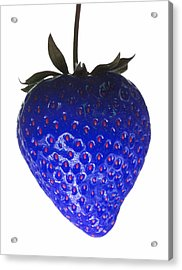 Blue Strawberry Acrylic Print by Tim Booth