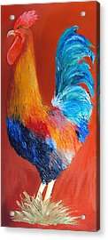 Blue Tail Rooster Acrylic Print by Susie Bell