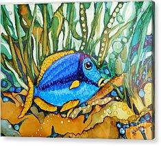 Blue Tang Acrylic Print