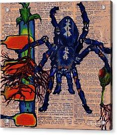 Blue Tarantula Acrylic Print by Emily McLaughlin
