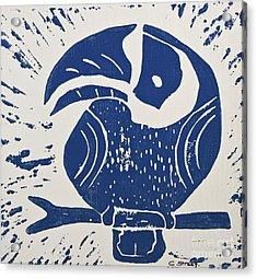 Blue Toucan Acrylic Print