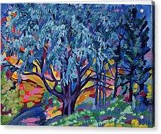 Blue Tree Far Country Acrylic Print