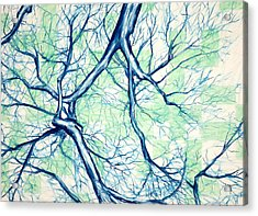 Blue Tree With Green Sky Acrylic Print by John Terwilliger