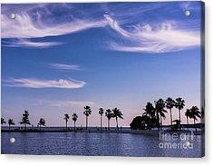 Blue Tropics Acrylic Print