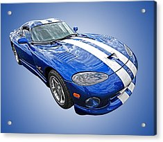 Blue Viper Acrylic Print