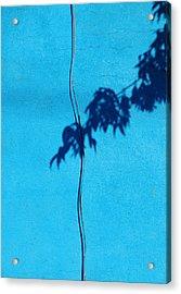Blue Wall Acrylic Print by JoAnn Lense