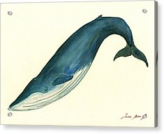 Blue Whale Painting Acrylic Print by Juan  Bosco