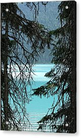 Acrylic Print featuring the photograph Blue Whisper by Al Fritz