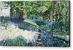 Bluebell Forest Acrylic Print by Joanne Perkins