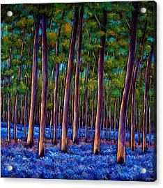 Bluebell Wood Acrylic Print by Johnathan Harris