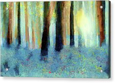 Bluebell Wood By V.kelly Acrylic Print