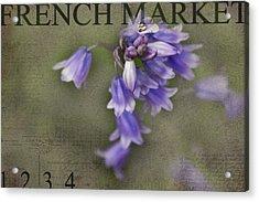 Bluebells Acrylic Print by Rebecca Cozart