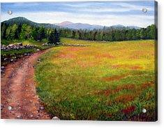 Blueberry Field 09 Acrylic Print by Laura Tasheiko