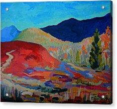 Blueberry Sunrise Acrylic Print by Francine Frank
