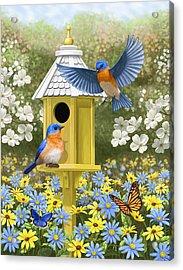 Bluebird Garden Home Acrylic Print