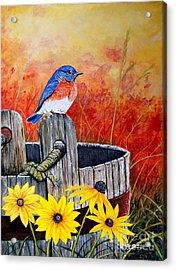 Bluebird Spring  Acrylic Print by Jeff McJunkin