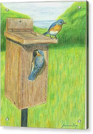 Acrylic Print featuring the painting Bluebirds by Jeanne Kay Juhos