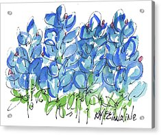 Bluebonnet Dance Watercolor By Kmcelwaine Acrylic Print