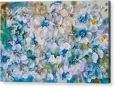 Bluebonnet Acrylic Print by Don  Wright