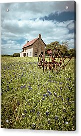 Acrylic Print featuring the photograph Bluebonnet Fields by Linda Unger