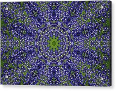 Bluebonnet Lace Kaleidoscope Acrylic Print by Robyn Stacey