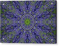 Bluebonnet Lace Kaleidoscope Acrylic Print