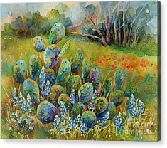 Bluebonnets And Cactus Acrylic Print by Hailey E Herrera