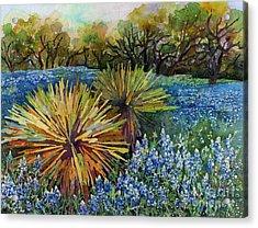 Bluebonnets And Yucca Acrylic Print by Hailey E Herrera
