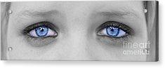 Blueeyes Acrylic Print by Lionel Martinez