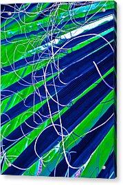 Bluegreen Palm Fun Acrylic Print by Gwyn Newcombe