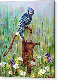 Acrylic Print featuring the painting Bluejay Peaceful Perch by Judy Filarecki