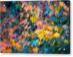 Blurred Leaf Abstract 3 Acrylic Print