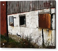 Boarded Up Acrylic Print by Sheryl Burns