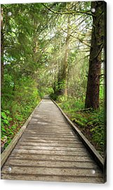 Boardwalk Along Hiking Trail At Fort Clatsop Acrylic Print