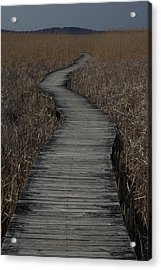 Boardwalk Acrylic Print by Eric Workman