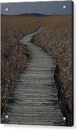 Boardwalk Acrylic Print by Eric Workman
