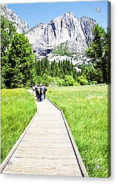Boardwalk On Yosemite Meadow Acrylic Print