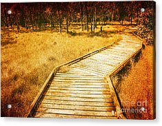 Boardwalk Through Vintage Wetlands Acrylic Print by Jorgo Photography - Wall Art Gallery