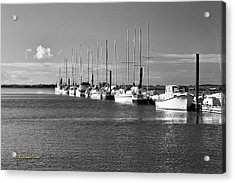 Boats On The Estuary Acrylic Print by Tom Buchanan