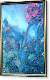 Bob Hope Rose Acrylic Print by Bryan Alexander
