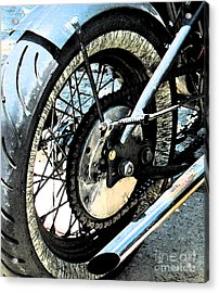Bobber Acrylic Print by Gary Everson