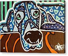 Bobby Blue Eyes Acrylic Print