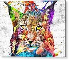 Bobcat Grunge Acrylic Print by Daniel Janda