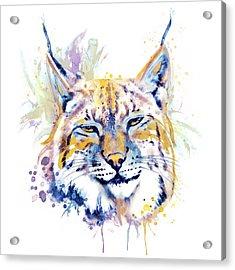 Bobcat Head Acrylic Print by Marian Voicu