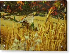 Acrylic Print featuring the digital art Bobwhite In Flight by Chris Flees