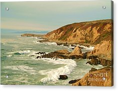 Bodega Bay Coastline  One Acrylic Print by Alberta Brown Buller